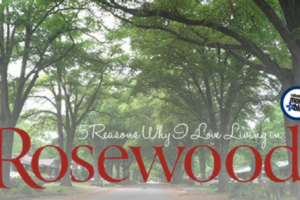 5 reasons I love rosewood neighborhood | Columbia SC Moms Blog
