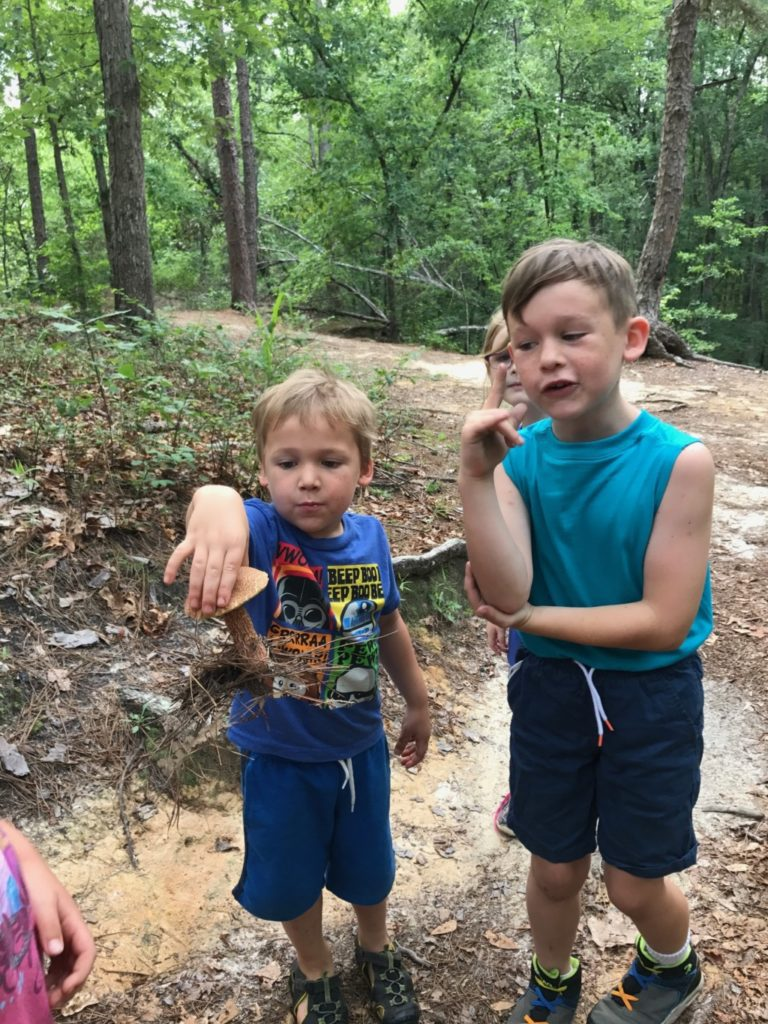 Peachtree Rock | Columbia SC Moms Blog