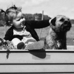 The Hard Truth About Toddlers and Dogs