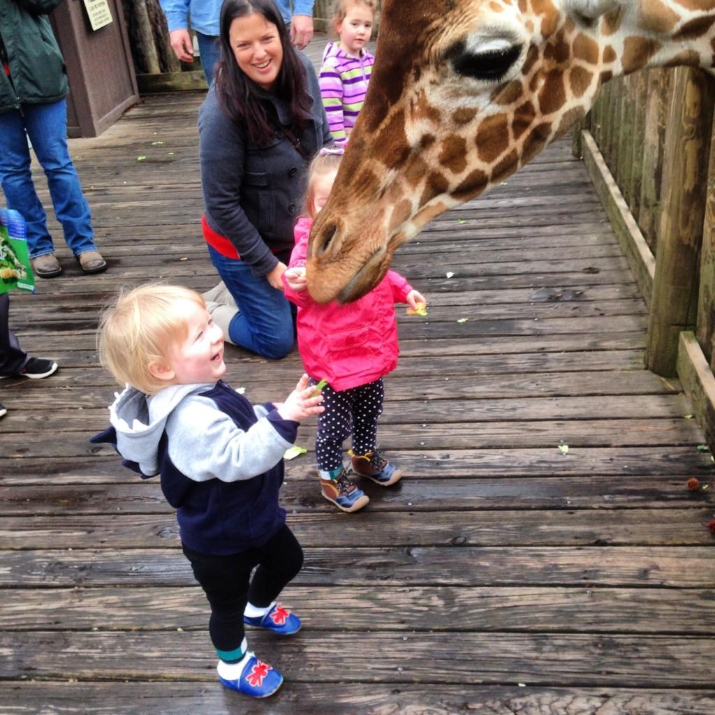 Riverbanks Zoo | Columbia SC Moms Blog