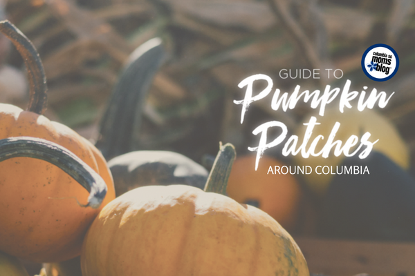Guide to Pumpkin Patches Around Columbia | Columbia SC Moms Blog