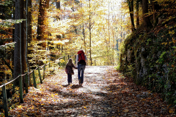 Let S Hit The Trails Top 10 Kid Friendly Hiking Spots