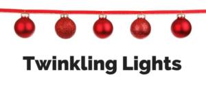 lights before christmas at riverbanks zoo - Riverbanks Zoo Lights Before Christmas