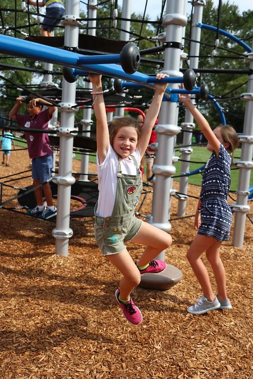 hammond playground 4