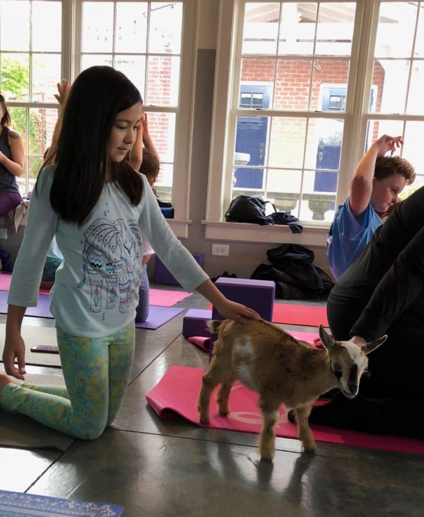 Fit Columbia Baby Goat Yoga | Columbia SC Moms Blog