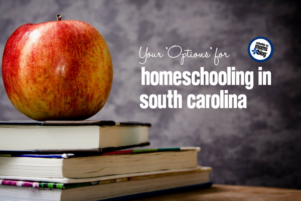 Your Options For Homeschooling in South Carolina | Columbia SC Moms Blog