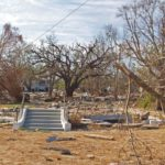 Hurricane Lessons From a Katrina Survivor
