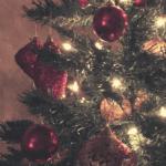 No Apologies :: I Put My Christmas Tree Up Early   Columbia SC Moms Blog