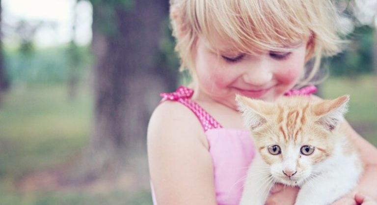What I Did When My Toddler's Cat Died